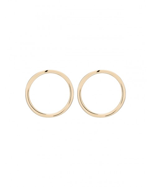 Raw Gold Earrings N°34