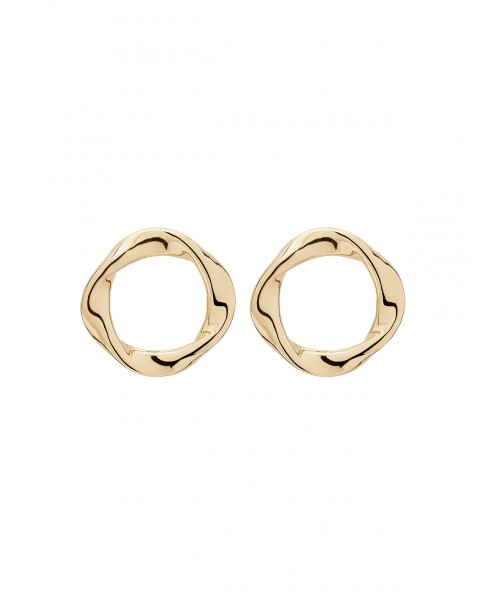 Twirl Gold Earrings N°33