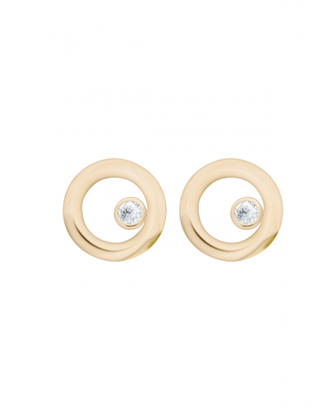 Classic Gold Earrings N°31