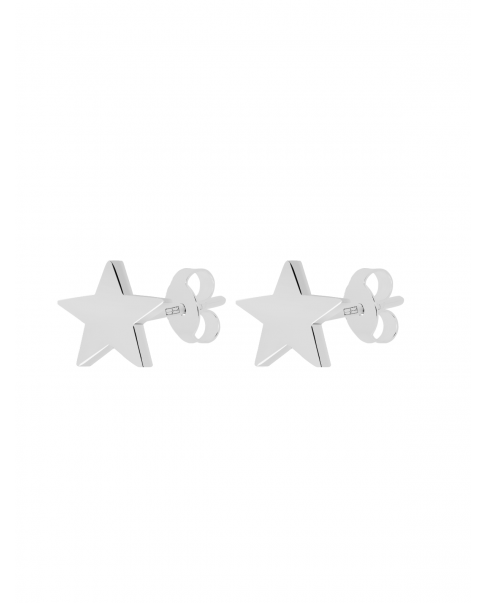 Classic Silver Earrings N°29