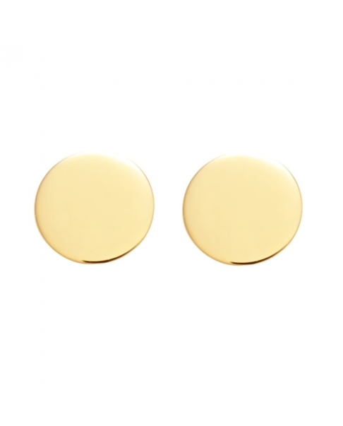 Classic Gold Earrings N°17