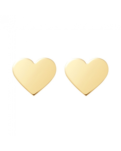 Classic Gold Earrings N°19