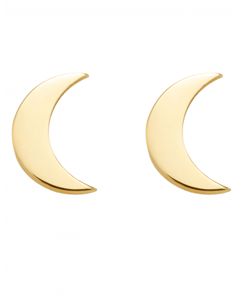 Moonlight Gold Earrings No1